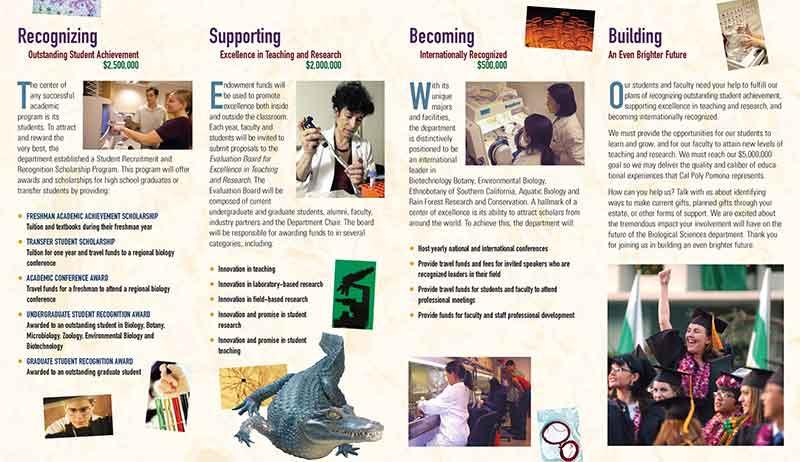 biocamhighresjpgpage2web